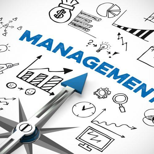 management-centre-de-formation-toulouse